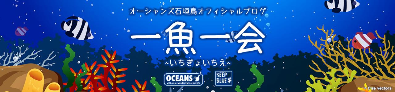 オーシャンズ石垣島オフィシャルブログ 一魚一会